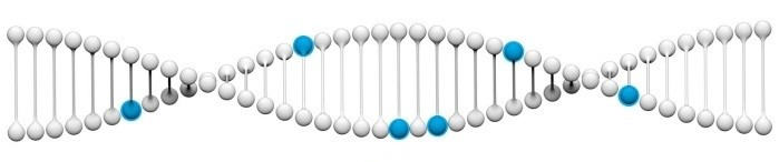 Best home DNA Stress testing online - Test genetic Stress online