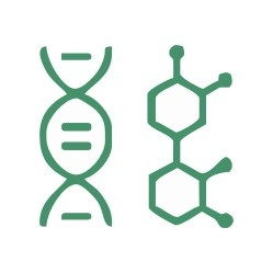 Genetics DNA sequencing process