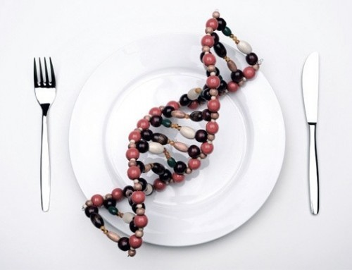 What is nutrigenetics and nutrigenomics?