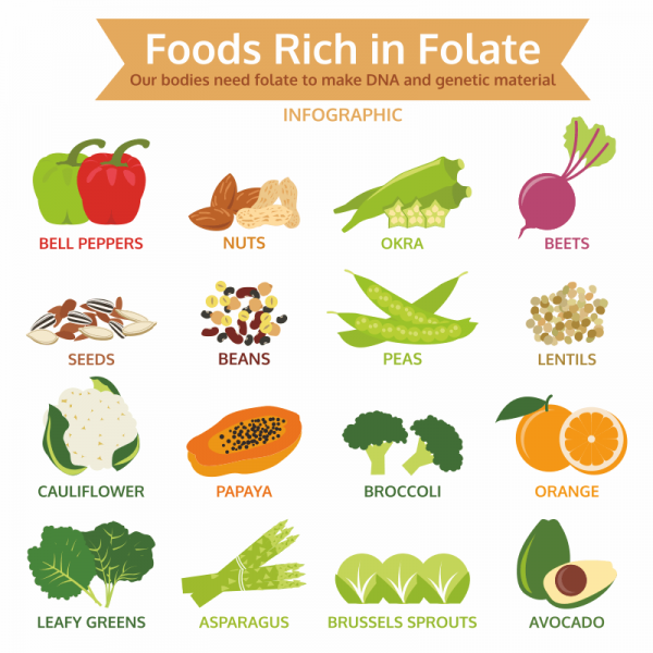 Food and folic acid in healthy diet