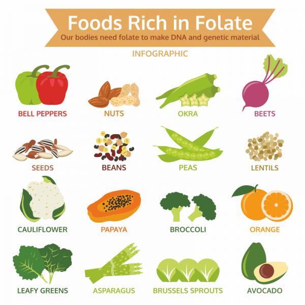 Food and folic acid in healthy diet