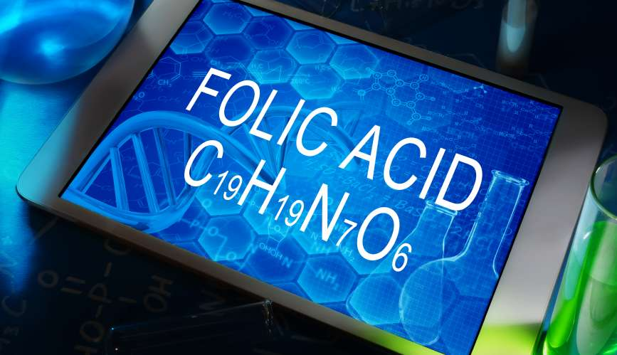 How important is for our DNA folate