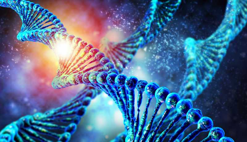 What do gene mutations to our body