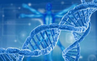 You can revers DNA damages